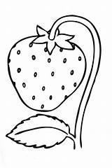 Coloring Pages Strawberries Strawberry Print Printable Sheets Fruit Fruits Ab Di Raskraski Raskraska Years sketch template