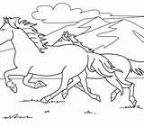 Coloring Horse Horses Rearing Clydesdale Herd Realistic Mustang Getcolorings Wild Printable Getdrawings Colorings Animal sketch template