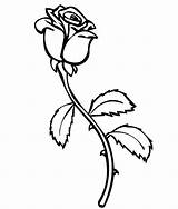 Coloring Pages Rose Roses Printable Flower Sheets sketch template