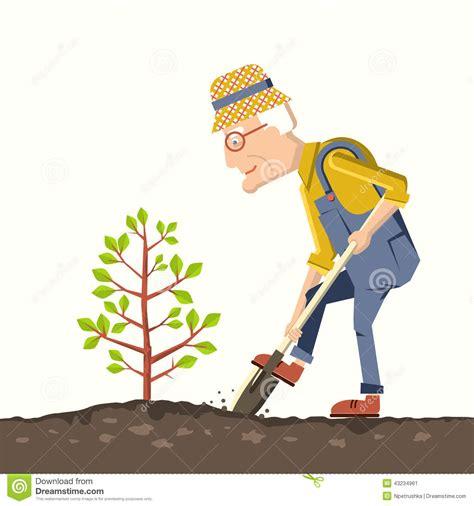 man gardener plant  tree stock vector image