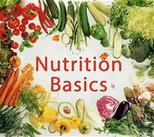Nutrition Basics | Fitness Ablaze Training Center