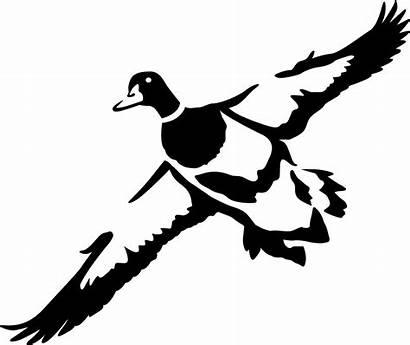 Duck Hunting Silhouette Ducks Clipart Deer Mallard