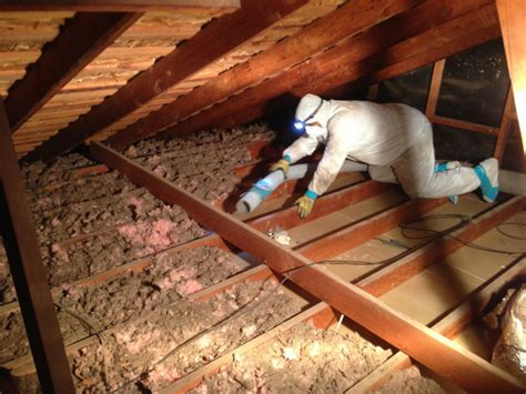 attic insulation removal replacement  san diego