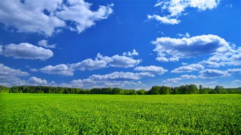 Free photo: Green Landscape - Bridge, Fields, Grass - Free ...