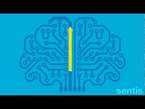 How Habits Are Formed In The Brain by Videos This Video And Brain Injury On Pinterest