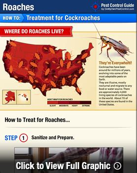 how to prevent cockroaches in kitchen cabinets how to get rid of roaches roaches your step by 9529