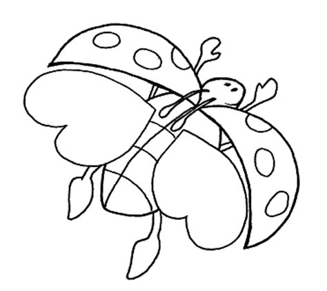 HD wallpapers ladybug coloring page
