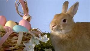 easter dates easter eggs easter bunny history