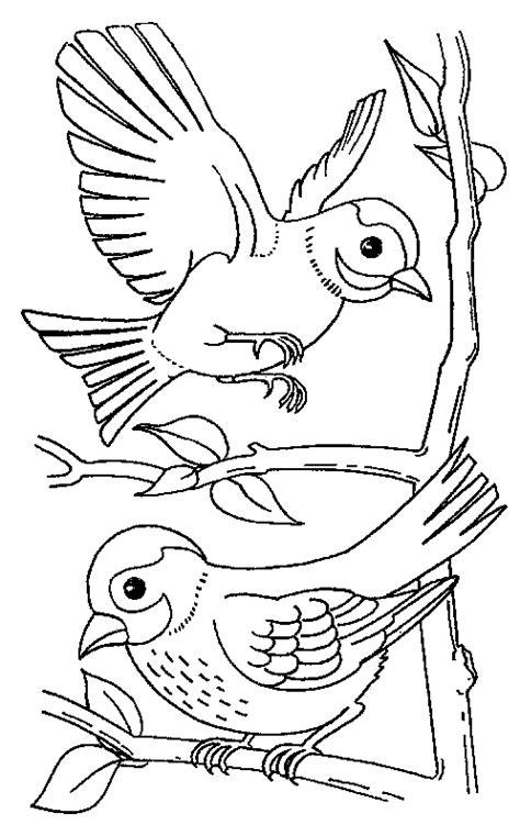 2 Vogels Kleurplaat by Kleurplaten En Zo 187 Kleurplaat Vogels