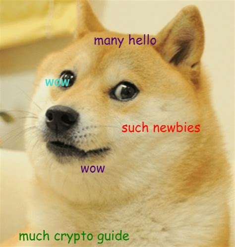 Beginner's Guide to What is Dogecoin (+ Best Dogecoin Wallet)