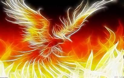 Phoenix Wallpapers Cave