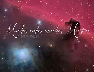 Muchas Vidas  Muchos Maestros By Patricia Ahumada