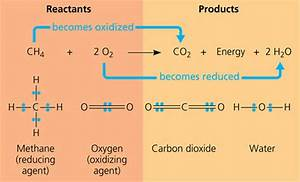 Chemistry  What Are Examples Of Oxidation Reactions And