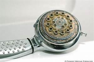 Kalk Entfernen Essig : duschkopf reinigen so entkalken und entfernen sie ~ Watch28wear.com Haus und Dekorationen