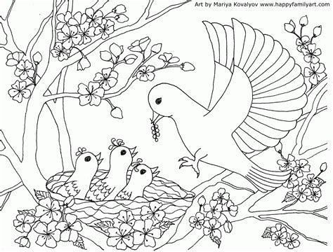 Cherry Blossom Coloring Page