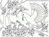 Coloring Blossom Cherry Pages Happy Popular Fun sketch template