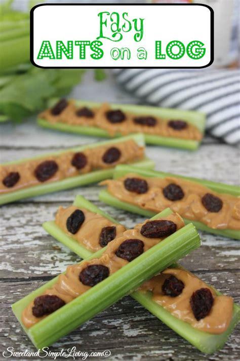 easy ants   log recipe sweet  simple living