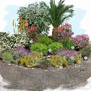 1 ciste 2 valeriane rouge 3 eleagnus ebbengei 4 phoenix With charming comment amenager un petit jardin 3 10 projets recup pour le jardin