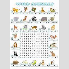 Wild Animals  Wordsearch Worksheet  Free Esl Printable Worksheets Made By Teachers