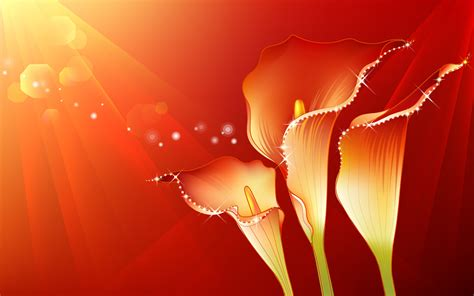 Flower Hd Wallpapers For Laptop, Android, Tablets