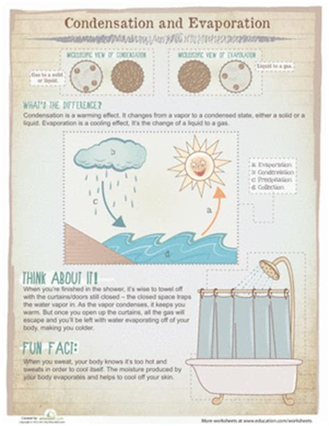 condensation and evaporation worksheet education