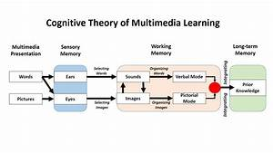 Designing Multimedia Instruction For Professional