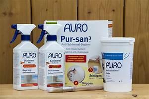Anti Schimmel Putz : auro pur san anti schimmel system naturanum ~ Orissabook.com Haus und Dekorationen