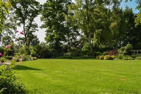 kleine tuinen zonder gras de groei mossen zal aanzienlijk worden getemperd het