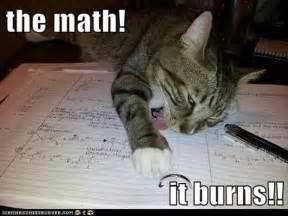 math cats math cat dump a day
