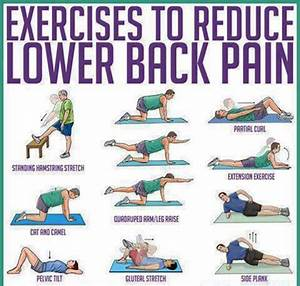 Lower Back Exercises: Ease Your Lower Back Pain