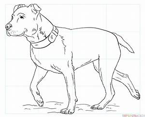 How to draw a pitbull | Step by step Drawing tutorials