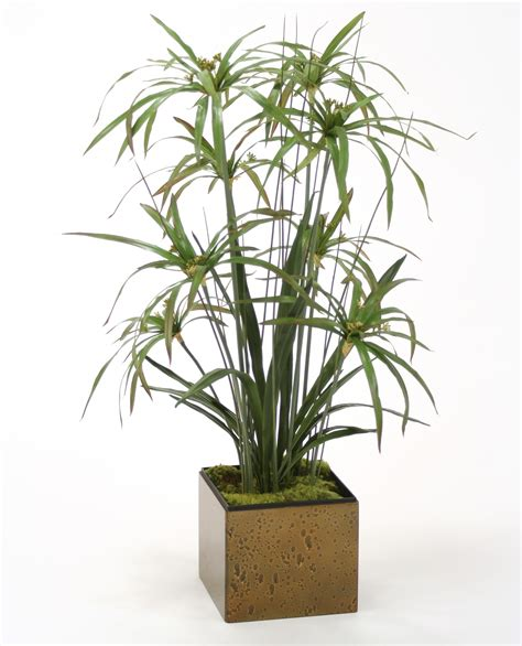 steins artificial trees silk umbrella papyrus grass mix with cymbidium leaf plants free shipping in usa 1001shops