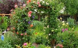 Rosen Für Rosenbogen : rosenbogen rosen und rosengarten rosenbogen garten und rosensorten ~ Orissabook.com Haus und Dekorationen