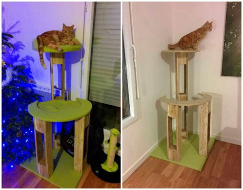 pallet cat scratching tree arbre  chat  pallets