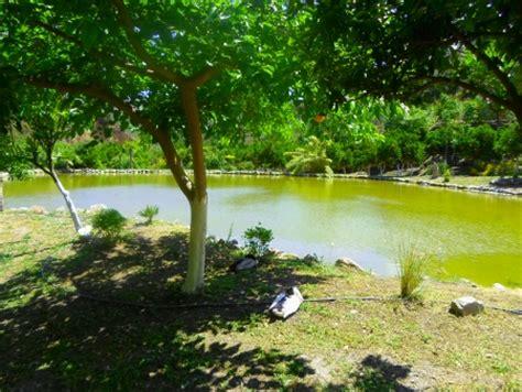 Botanischer Garten Berlin öffnungszeiten Und Eintrittspreise by Der Botanische Garten Kreta Beschreibung Rundweg