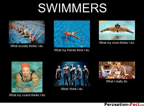 What I Do Meme - swimmers what people think i do what i really do perception vs fact