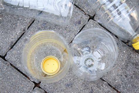 Zucchini & Kürbis Mit Plastikflaschen Bewässern » Majas