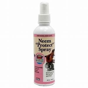 Neem Gegen Blattläuse : neem spray neem niem bio hygiene haushaltsspray gegen ~ Watch28wear.com Haus und Dekorationen