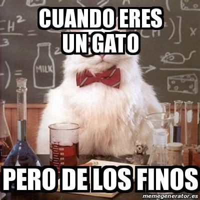 Chemistry Cat Meme Generator - meme chemistry cat cuando eres un gato pero de los finos 28628014