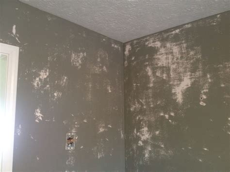 Dangers of painting over wallpaper glue (With Photos
