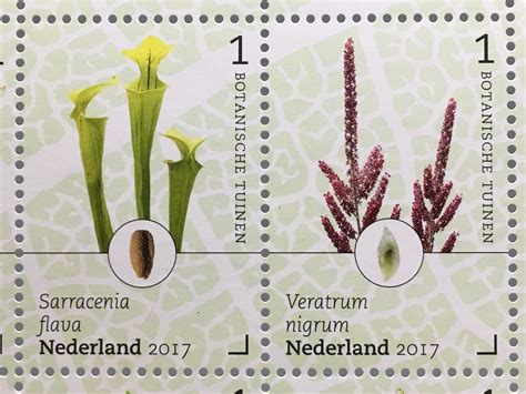 Japanischer Garten Den Helder by Niederlande 2017 Nr 3584 93 Botanische G 228 Rten In Den