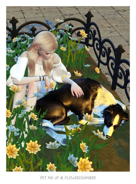 pet   poses sets  flower chamber sims  updates