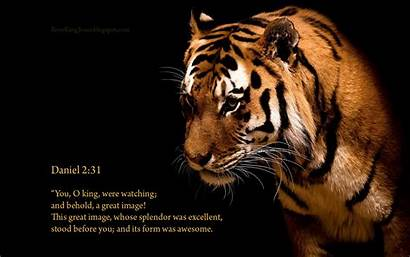 Awesome Tiger Wallpapers Background God Backgrounds Christian