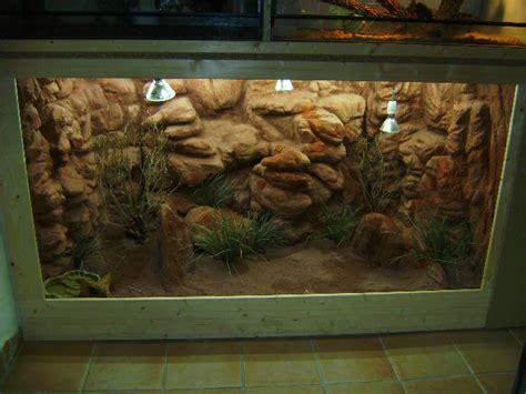 decor fond terrarium desertique decor de fond terrarium fait maison
