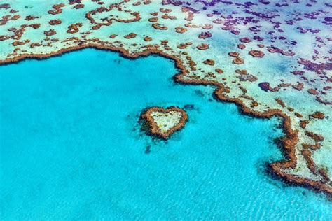 heart reef chilby photography