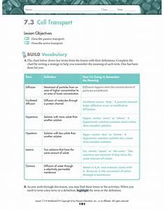 Pearson Education Biology Workbook Answer Key