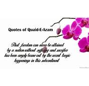 Sayings Of Quaid E Azam Quotes & Images  My Site