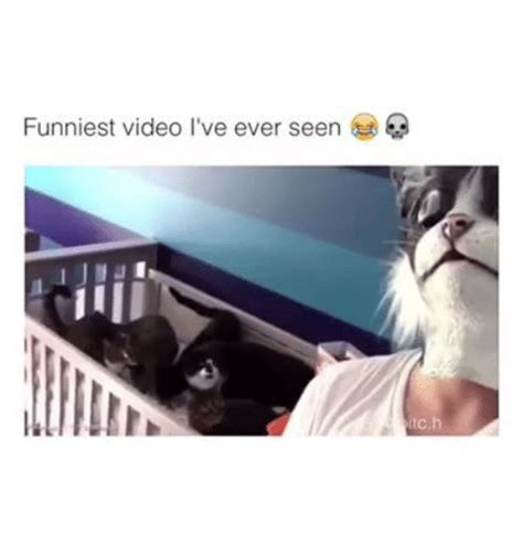 Funny Meme Video - funniest video i ve ever seen videos meme on sizzle