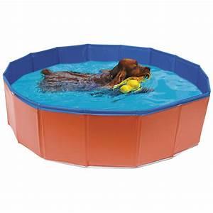 Piscine Plastique Dur : piscina per cani arcaplanet ~ Preciouscoupons.com Idées de Décoration