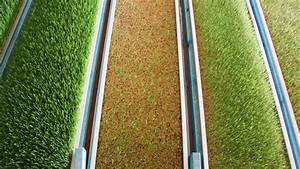 Intensive barley grass-growing system could have the ...